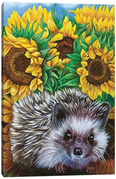 Hedgehog With Sundlowers Canvas Art Print
