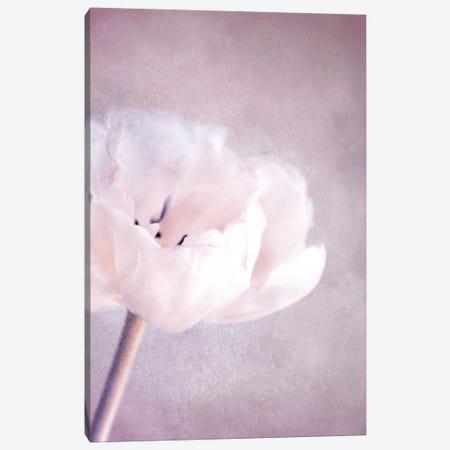 April 3-Piece Canvas #CDR108} by Claudia Drossert Canvas Art