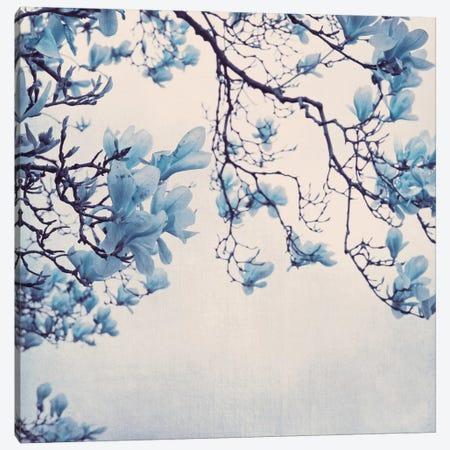 Blue Friday Canvas Print #CDR110} by Claudia Drossert Canvas Art Print