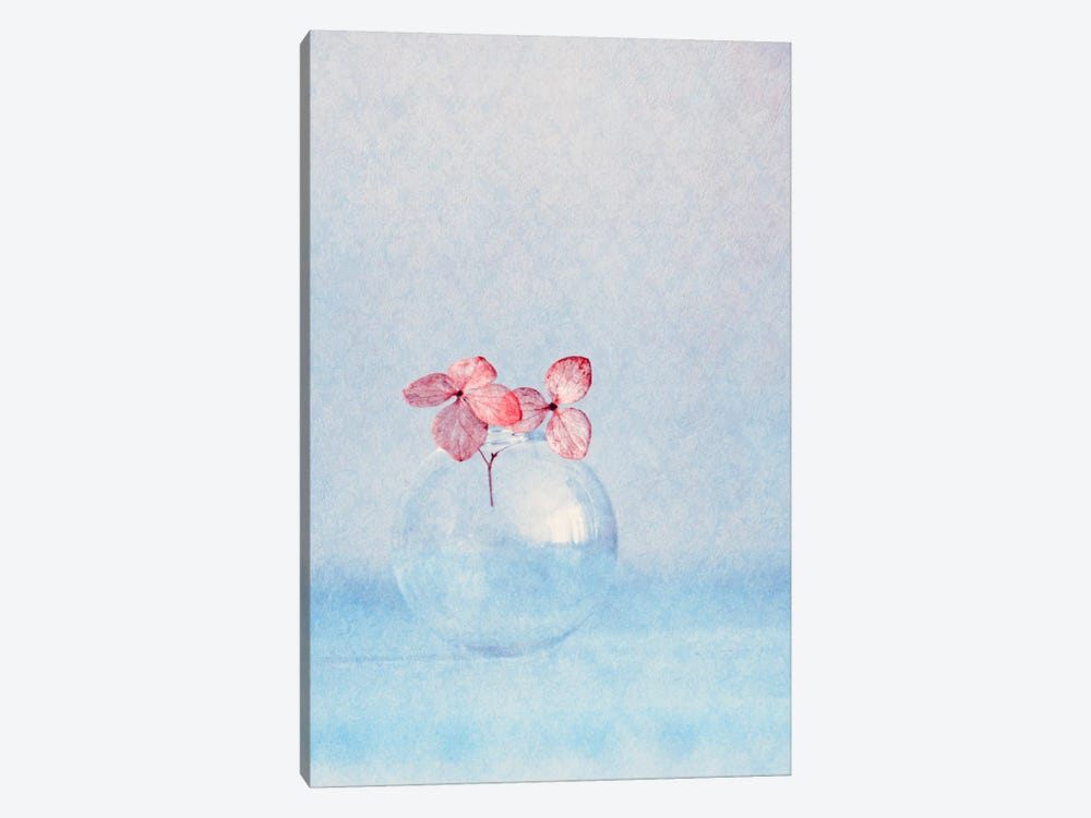 Small Things by Claudia Drossert 1-piece Canvas Print