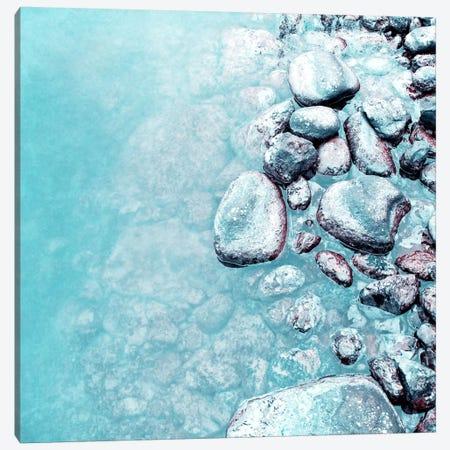 Stone Canvas Print #CDR130} by Claudia Drossert Art Print