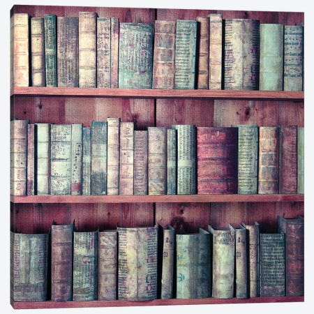 Books Canvas Print #CDR136} by Claudia Drossert Canvas Artwork