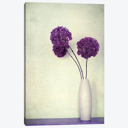 Charmant Canvas Print #CDR14} by Claudia Drossert Canvas Wall Art