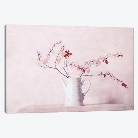 Springdays Canvas Print #CDR160} by Claudia Drossert Canvas Artwork