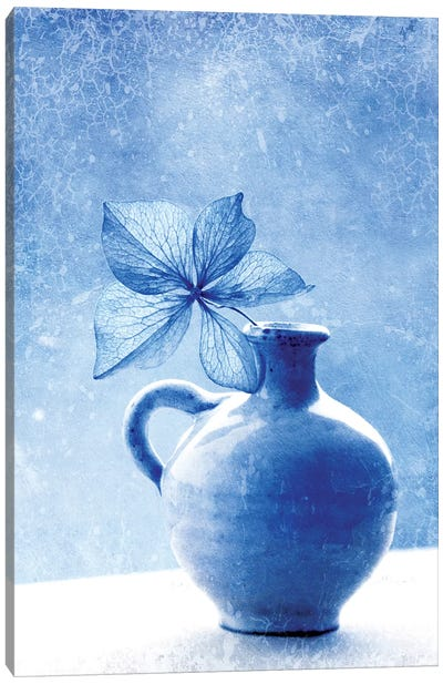 Blue Hydrangea Stilllife Canvas Art Print