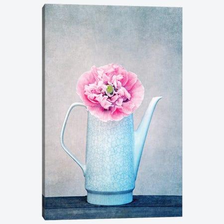 Vintage Flower Canvas Print #CDR170} by Claudia Drossert Canvas Art Print