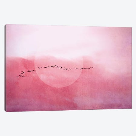 Journey Canvas Print #CDR174} by Claudia Drossert Canvas Art
