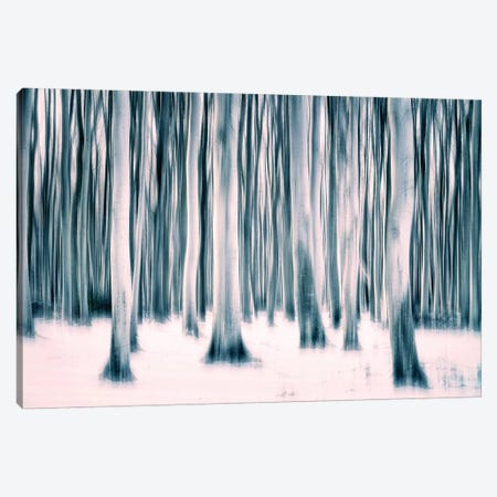 Forest Canvas Print #CDR176} by Claudia Drossert Canvas Artwork