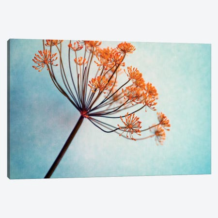 Dilly Canvas Print #CDR17} by Claudia Drossert Canvas Art
