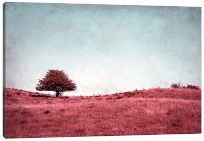Baumchen Canvas Print #CDR1