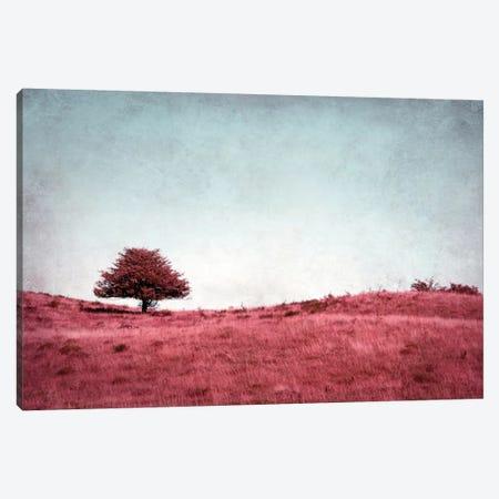 Baumchen Canvas Print #CDR1} by Claudia Drossert Canvas Wall Art