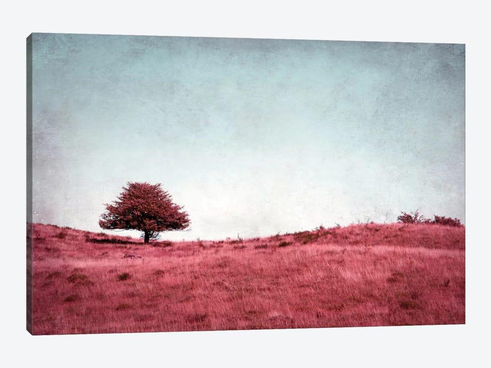 Baumchen by Claudia Drossert 1-piece Canvas Art Print
