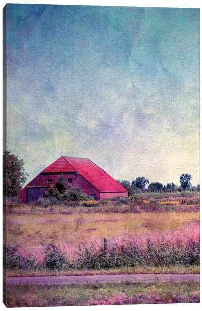 Hausinholland Canvas Art Print