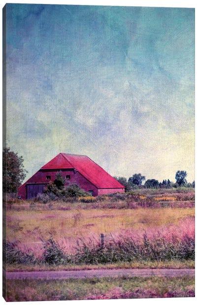 Hausinholland Canvas Art Print