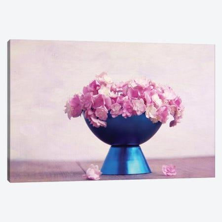 Ice Canvas Print #CDR27} by Claudia Drossert Canvas Art Print