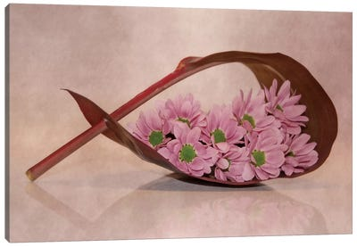 Little Flowers Canvas Art Print