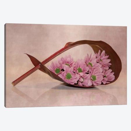 Little Flowers Canvas Print #CDR32} by Claudia Drossert Canvas Art Print