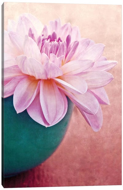 Beauty Canvas Art Print