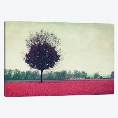 My Day VIII Canvas Print #CDR53} by Claudia Drossert Canvas Print