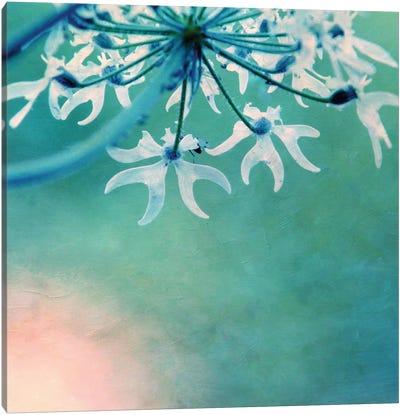 My Day IX Canvas Print #CDR54