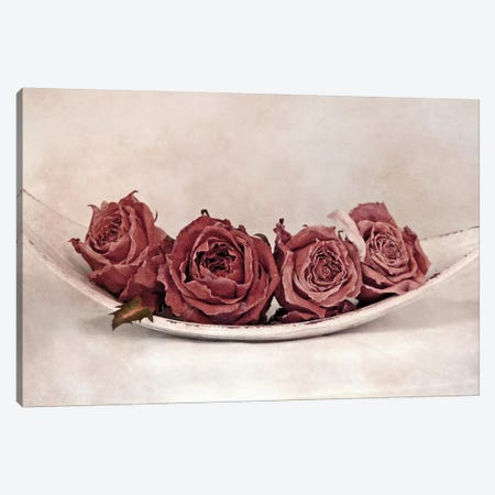 Quartet Of Roses Canvas Print #CDR60} by Claudia Drossert Canvas Wall Art