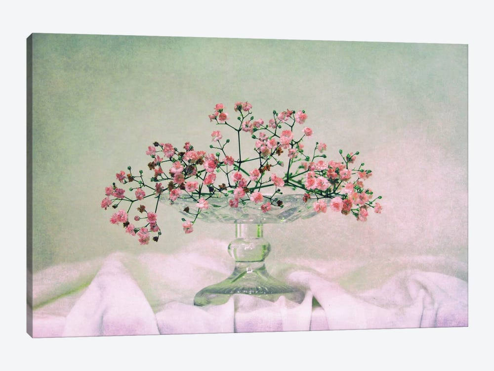 Schleierkraut by Claudia Drossert 1-piece Canvas Art