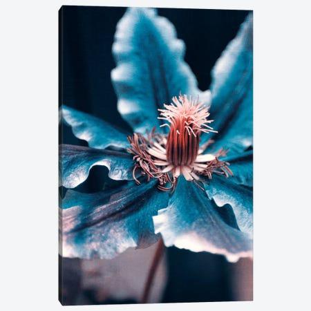 Deep Blue Canvas Print #CDR83} by Claudia Drossert Canvas Art