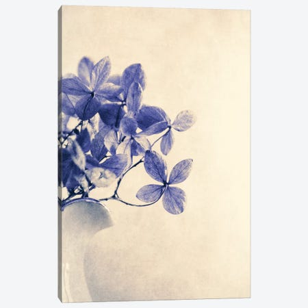 Mércores Canvas Print #CDR89} by Claudia Drossert Canvas Art