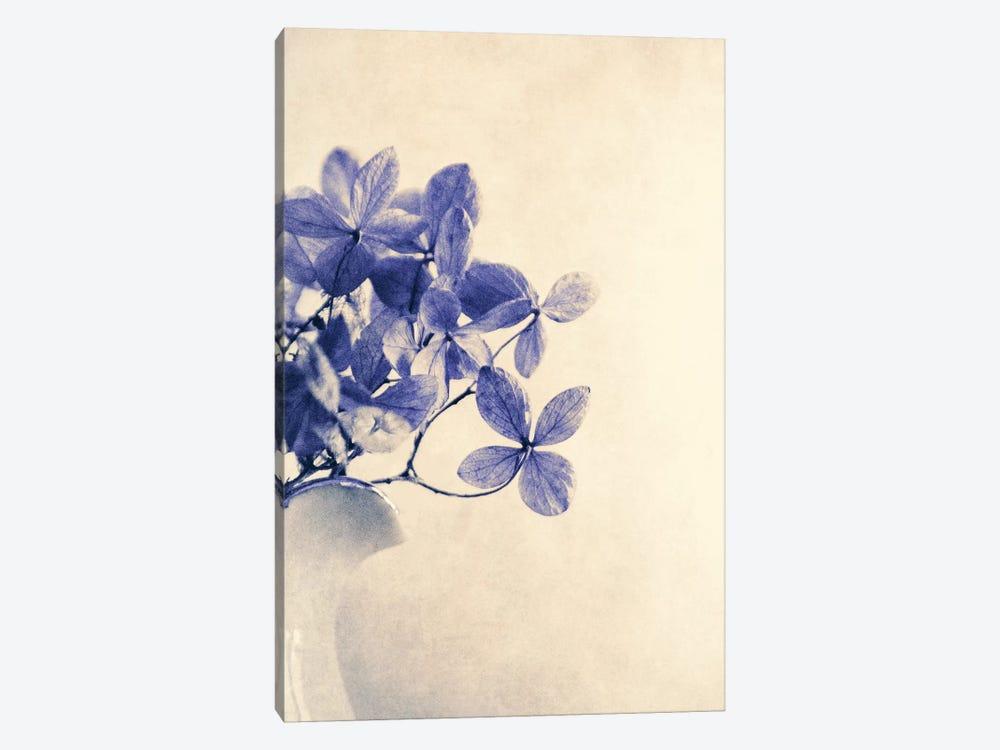 Mércores by Claudia Drossert 1-piece Canvas Art