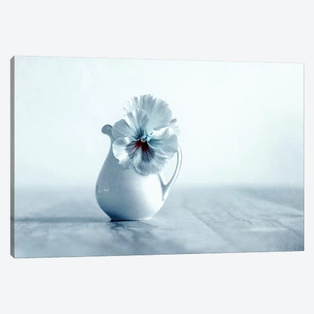 Soul Canvas Print #CDR97} by Claudia Drossert Canvas Art