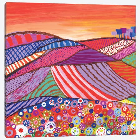 Patchwork Fields In Scotland Canvas Print #CDU31} by Caroline Duncan ART Canvas Wall Art