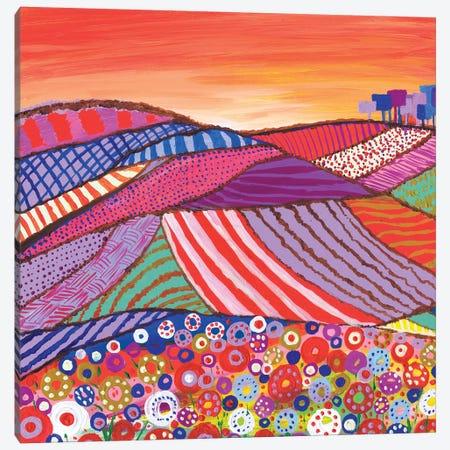 Patchwork Fields In Scotland 3-Piece Canvas #CDU31} by Caroline Duncan ART Canvas Wall Art
