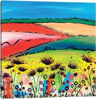 The Allium Fields Canvas Art Print