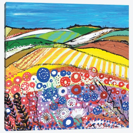 Wheatfields In Scotland Canvas Print #CDU58} by Caroline Duncan ART Canvas Artwork