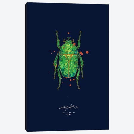 Trigonophorus Dilutus Canvas Print #CEE23} by Casimir Lee Canvas Artwork
