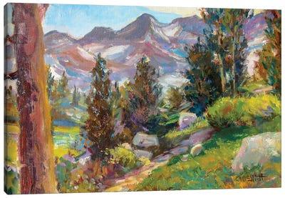 Trail Canvas Art Print