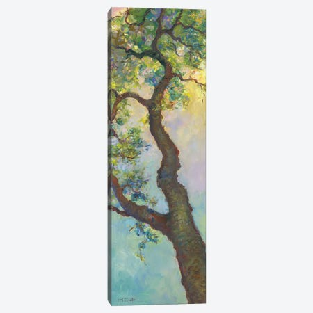 Tree Branch Canvas Print #CEI26} by Catherine M. Elliott Canvas Art Print