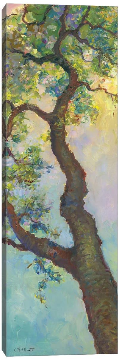 Tree Branch Canvas Art Print