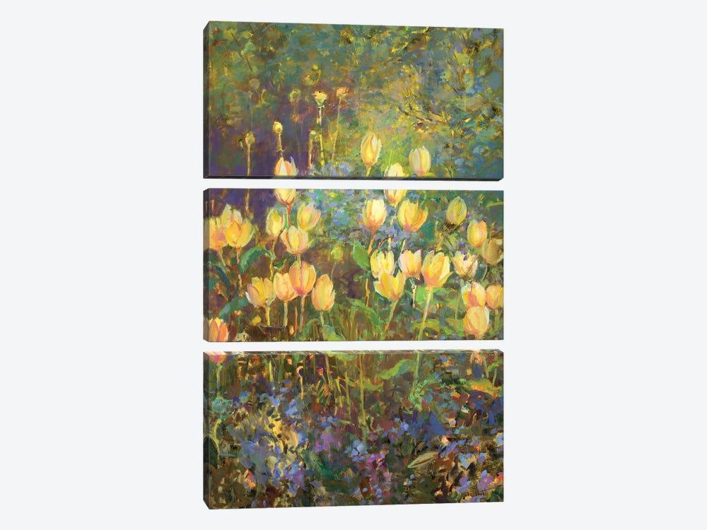 Tulips by Catherine M. Elliott 3-piece Canvas Art Print