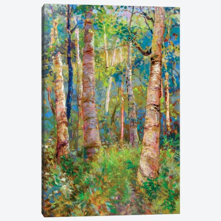 Birch Grove Canvas Print #CEI2} by Catherine M. Elliott Art Print