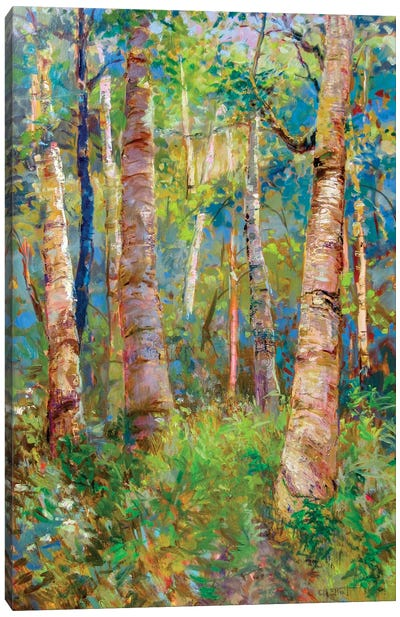 Birch Grove Canvas Art Print