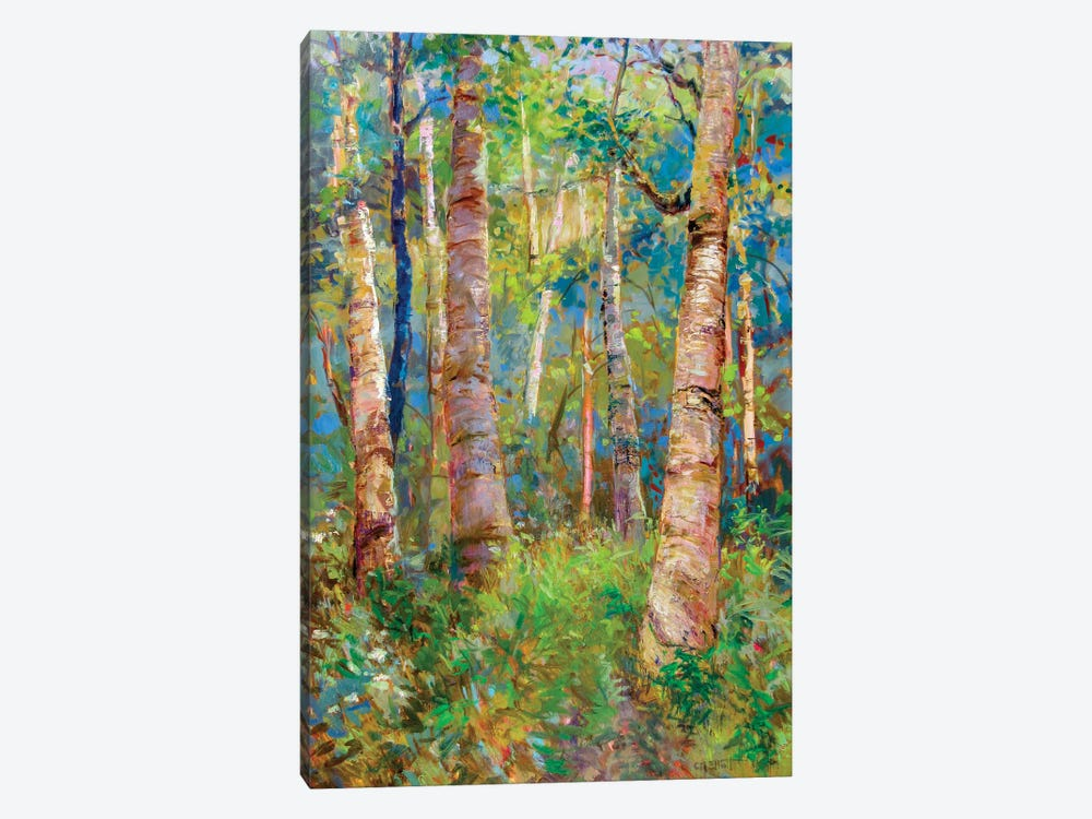 Birch Grove by Catherine M. Elliott 1-piece Canvas Art