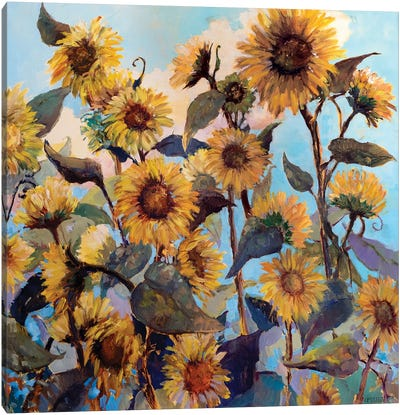 Sunflower Daze Canvas Art Print