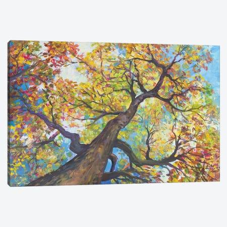 Tree House Canvas Print #CEI41} by Catherine M. Elliott Canvas Art