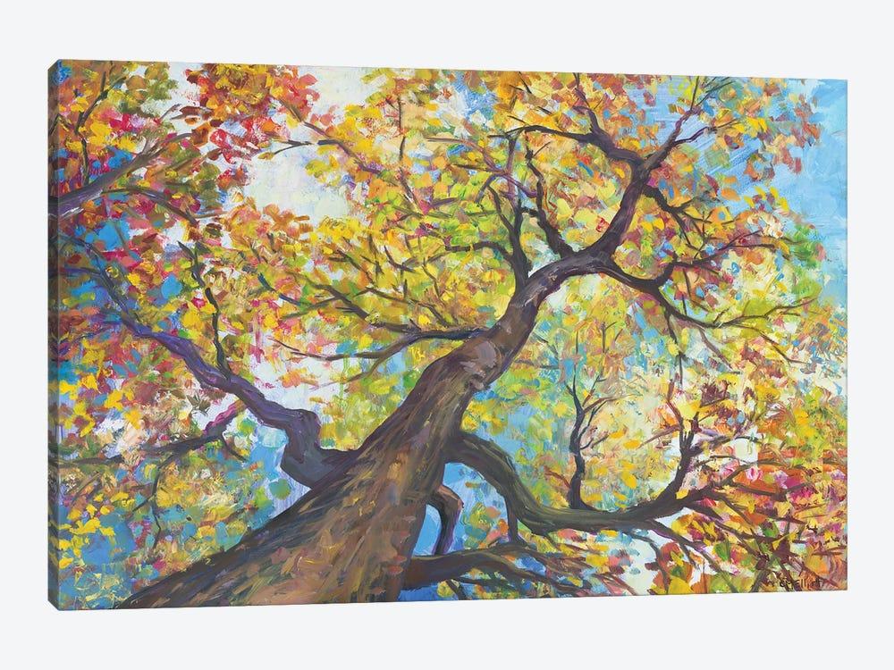 Tree House by Catherine M. Elliott 1-piece Canvas Wall Art