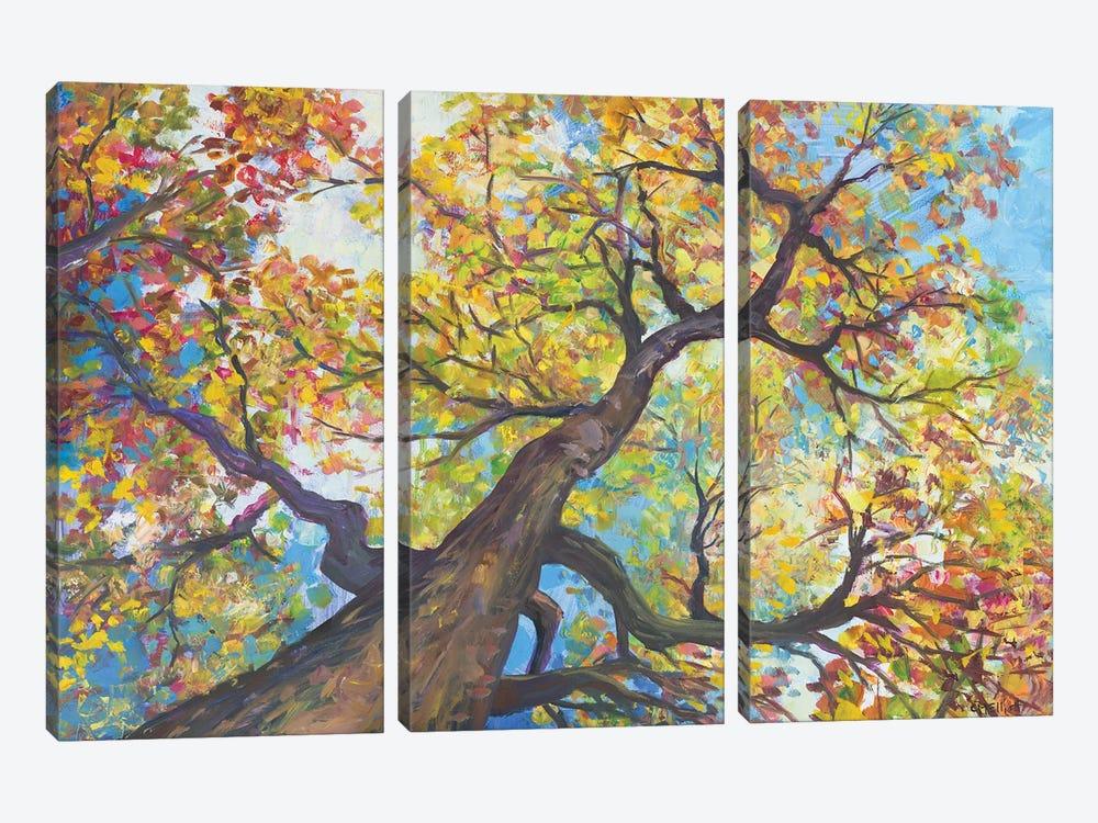 Tree House by Catherine M. Elliott 3-piece Canvas Wall Art