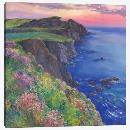 Cliffs Canvas Print #CEI5} by Catherine M. Elliott Canvas Artwork