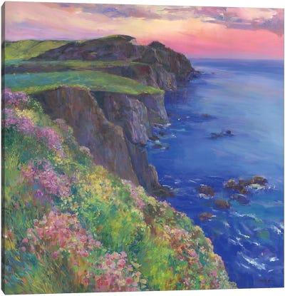 Cliffs Canvas Art Print