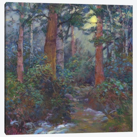 Forest Through The Trees Canvas Print #CEI8} by Catherine M. Elliott Art Print