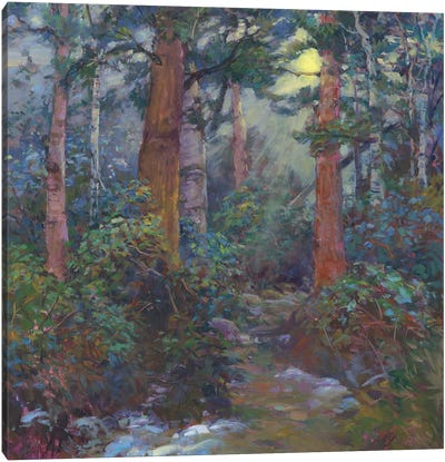 Forest Through The Trees Canvas Art Print